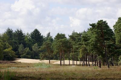 Natuurpark Hoge Veluwe 2005