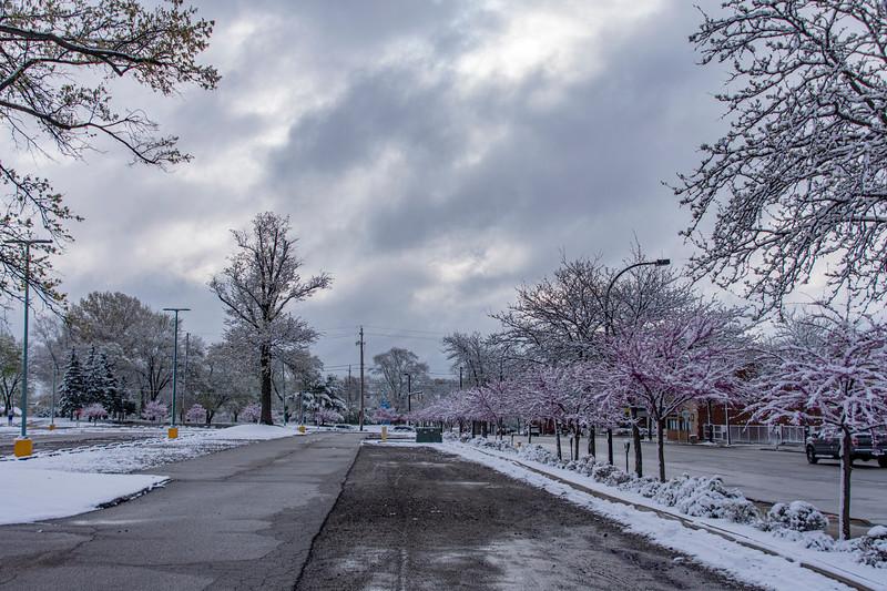 April20-Snow.jpg