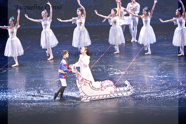 Miami Youth Ballet