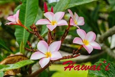 Hawaiian Islands - 2013