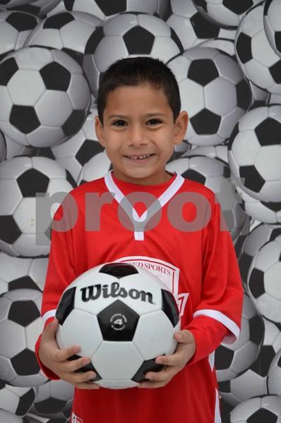 Sgate 2015 Fall Soccer