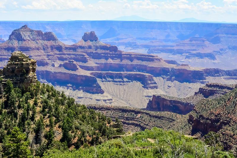 2019 Grand Canyon-225.jpg