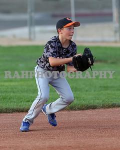 Carson Valley Little League game 4