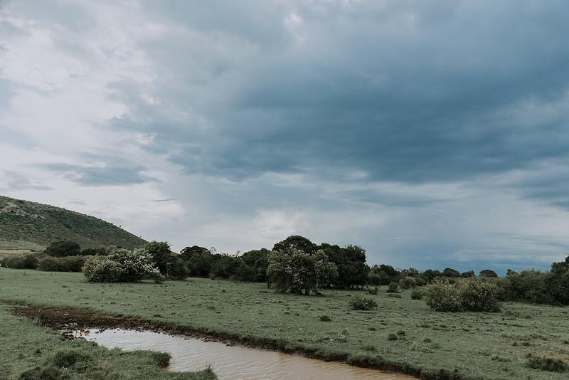 Tu-Nguyen-Destination-Wedding-Photographer-Kenya-Masai-Mara-Elopement-Doris-Sam-141.jpg