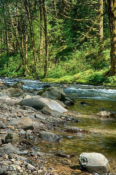 The Northwest: Oregon, Washington, Idaho