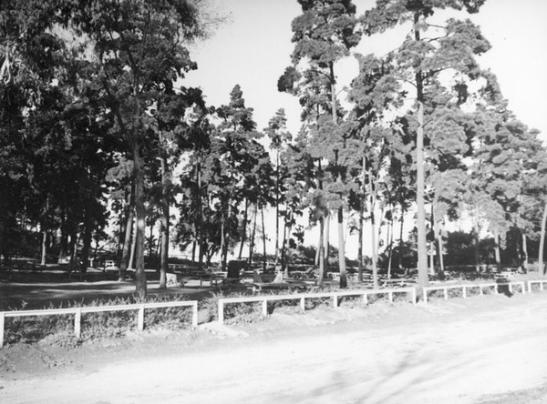 1937, Picnic Grounds