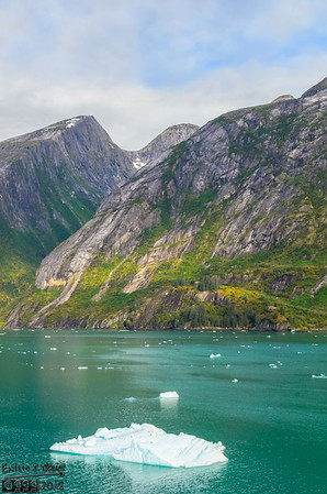 Tracy Arm - September 2012
