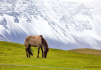 ICELAND:  Scenery and People - Click to Open