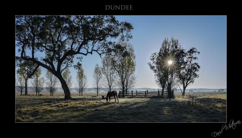 Dundee-Edit.jpg
