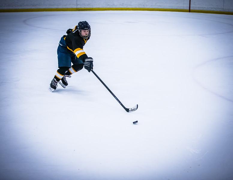 Bruins2-633.jpg