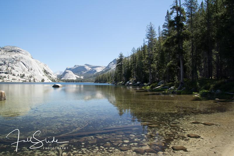 Yosemite 2018 -18.jpg