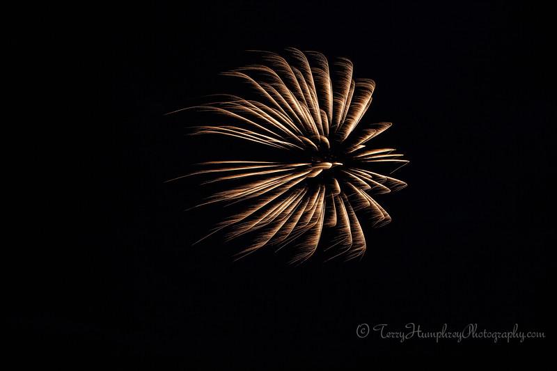 2019 Paradise Fireworks-60.jpg