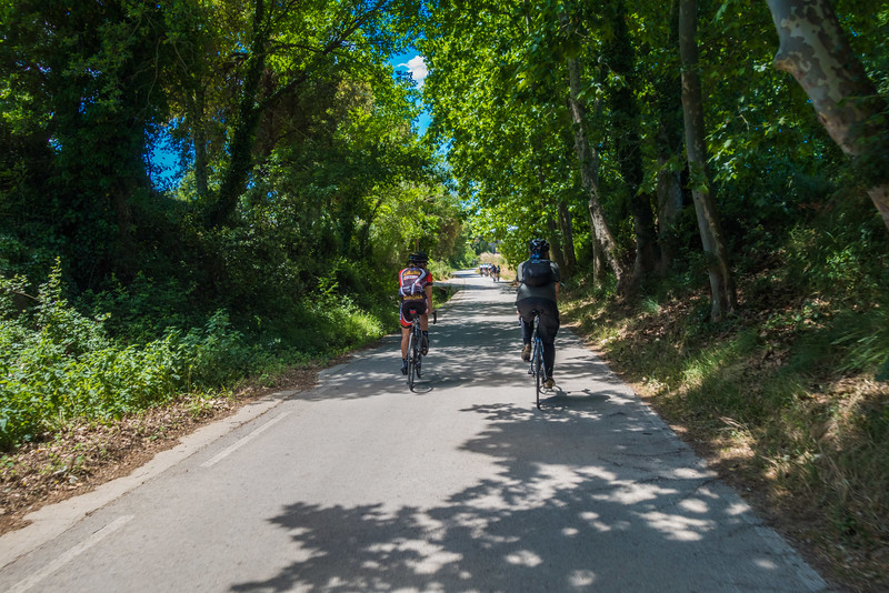 cycling-Girona-Bike-cat-27.jpg
