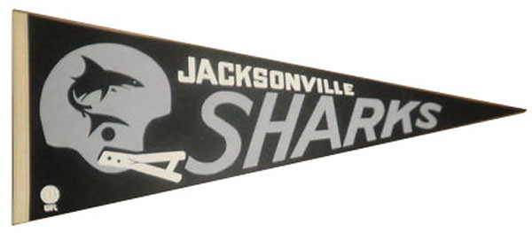 Sharks Pennant.JPG