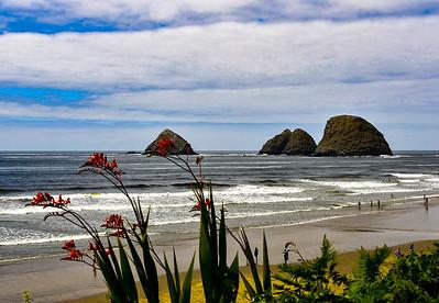 The Pacific Near New Port Oregon
