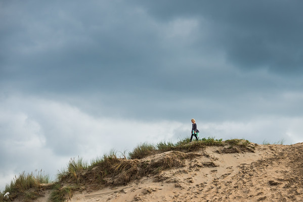 Dunes of Bloemendaal