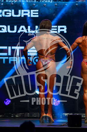 Pro Qualifier - Figure Up to and inclusive 163