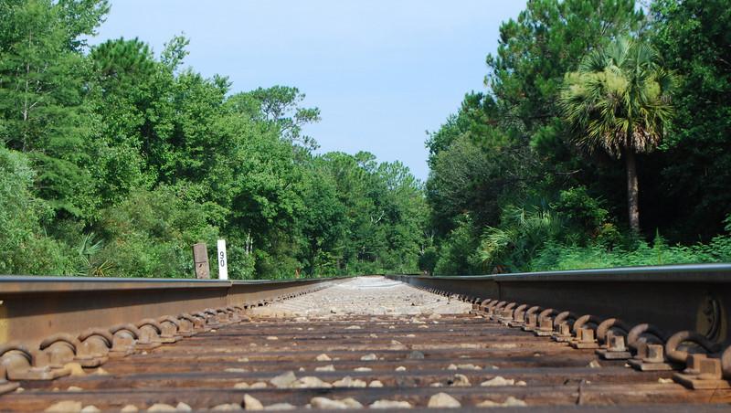 17 Tracks Heading North.jpg