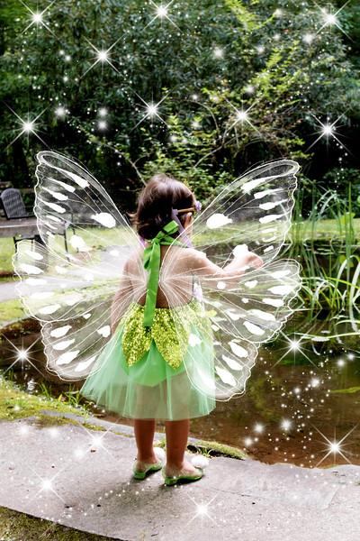 795A1953 fairy.jpg