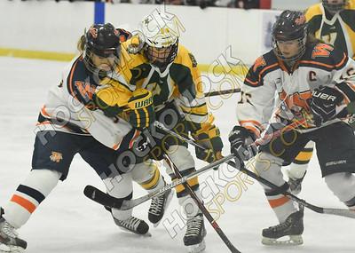 King Philip - Walpole Girls Hockey 2-18-19
