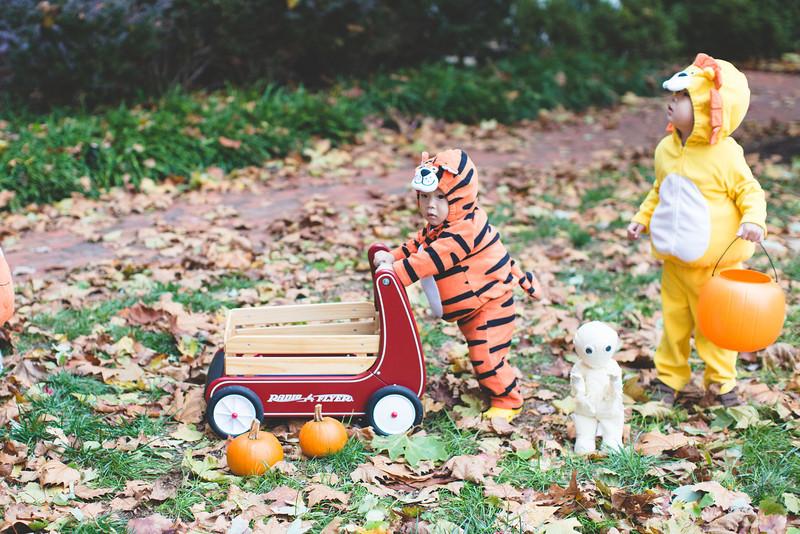 halloween_012.jpg