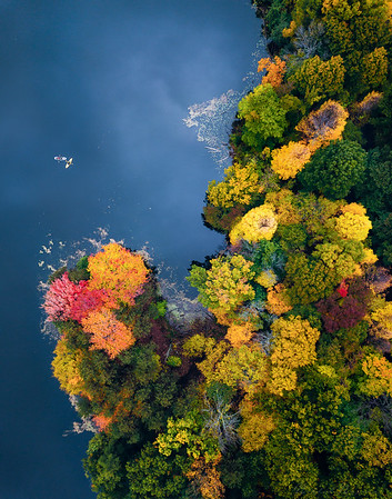 Autumn in Rochester