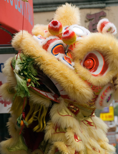 Dragon in China Town, San Francisco