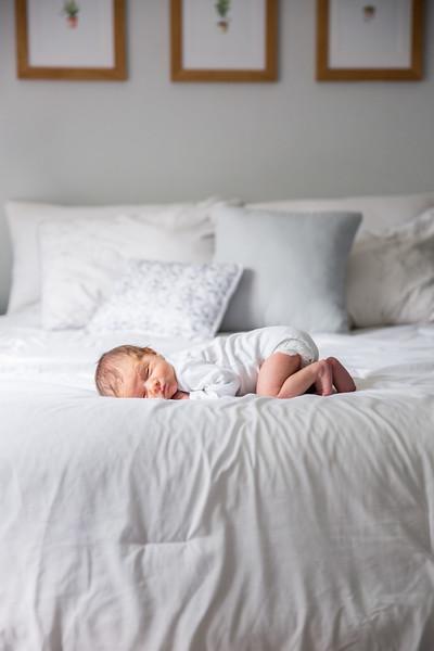 Baby Zippro