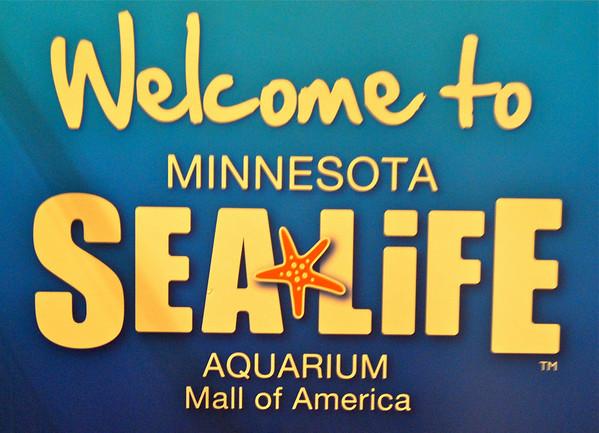 SeaLife Aquarium, July 29, 2012