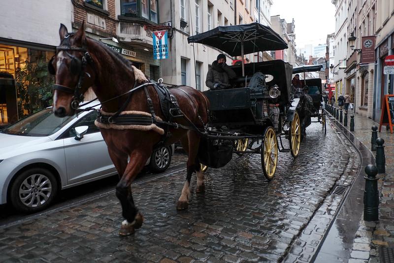 Brussels_20150222_0068.jpg