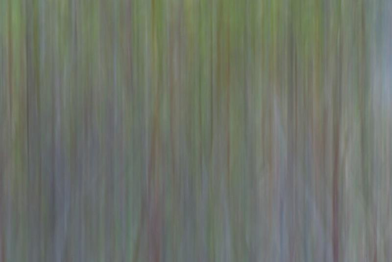 Abstract-I.jpg