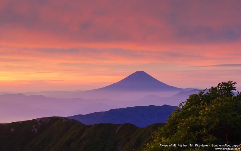A view of Mt. Fuji from Mt. Kita-dake -  Southern Alps, Japan