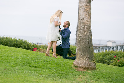 Max + Aly Proposal