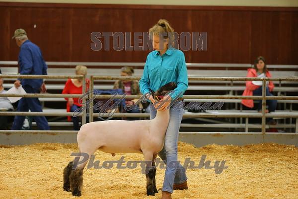 2019 Smith County Livestock Show