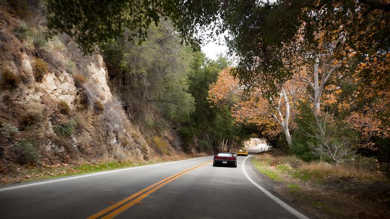 2010 12/05: CalCoastal NSX Canyon Drive X