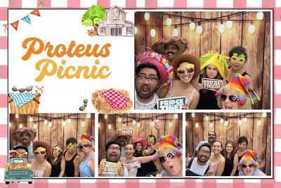 Proteus Picnic 2019