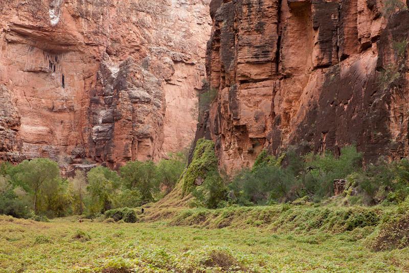 Grand Canyon October-0491.jpg