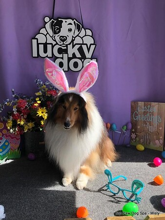 2019 04-15 Girls Easter Pictures