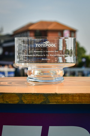 The toteplacepot Six Places In Six Races Claiming Stakes