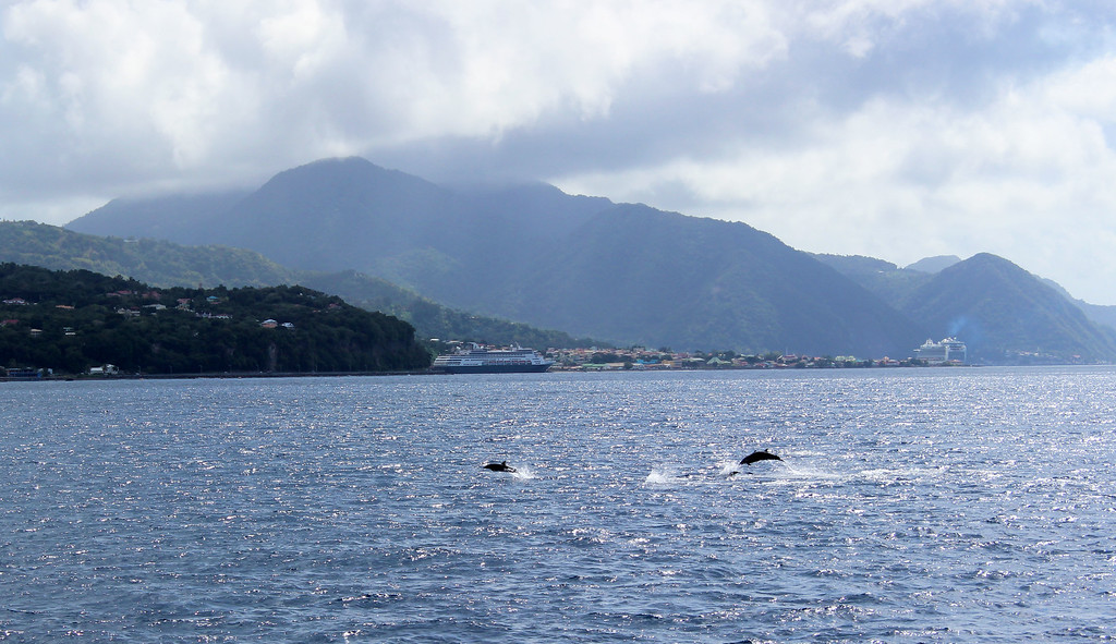 Best Snorkeling in the Caribbean - Dominica