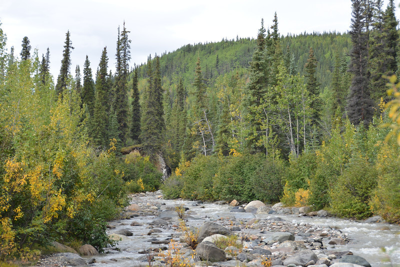Alaska Fall 2013 - 145.jpg