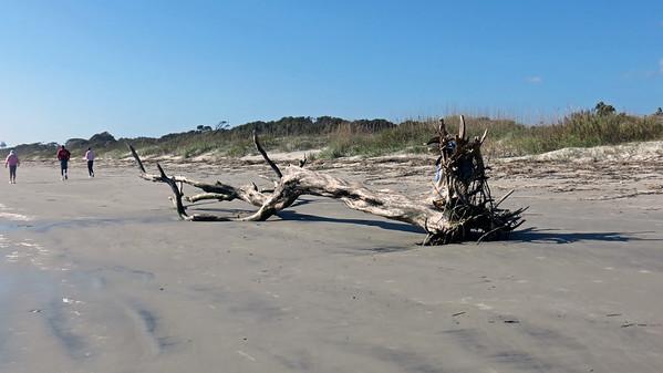 November 25:  Beach at the Days Inn .  .  .