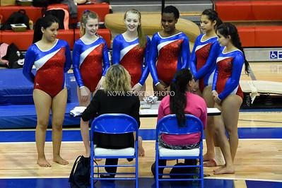 Gymnastics: Park View Meet 12.08.15