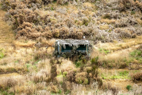 20170402 Mid Dome, Southland  _MG_3879 a.jpg