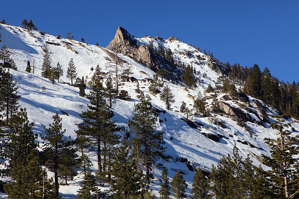 Rocks, snow, trees, everything you'd expect a mountain to have.jpg