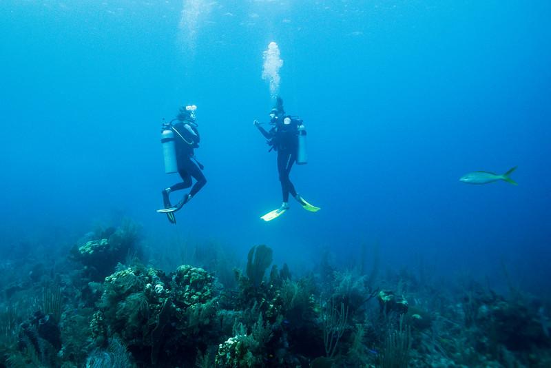 Scuba divers underwater, Belize