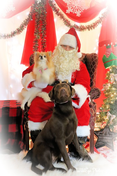 2018 Double J Santa Paws-Sidwell
