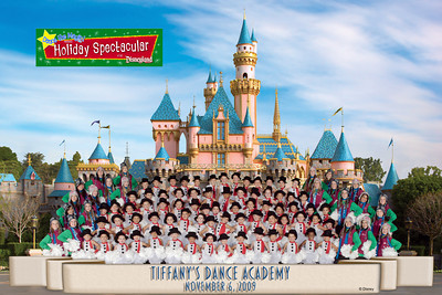 Disneyland 2009 Group Photo