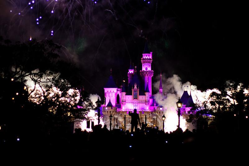 2010 - Jan - 18-24 - Family Disneyland Trip-0007