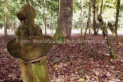 SURINAME, Jodensavanne. Freeman's Cemetery. (2007)